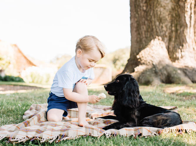 Фото №1 - С днем рождения: новые фото принца Джорджа