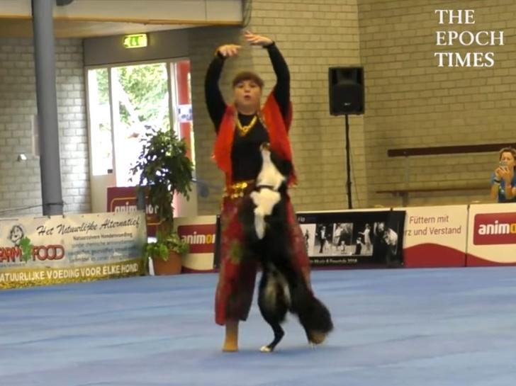 Фото №1 - Видео российской чемпионки по танцам с собакой стало вирусным