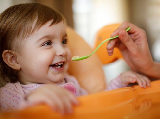 Фото №4 - Без слез и капризов: когда и как приучать ребенка к взрослой еде