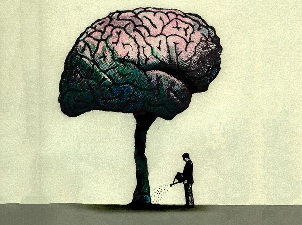 Фото №4 - Как повысить работоспособность мозга