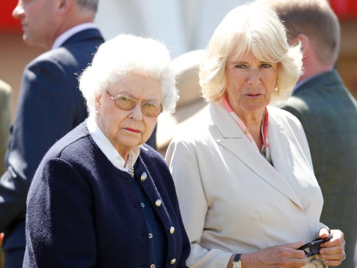 Фото №1 - Почему титулы Арчи и Лилибет Сассекских зависят от герцогини Камиллы