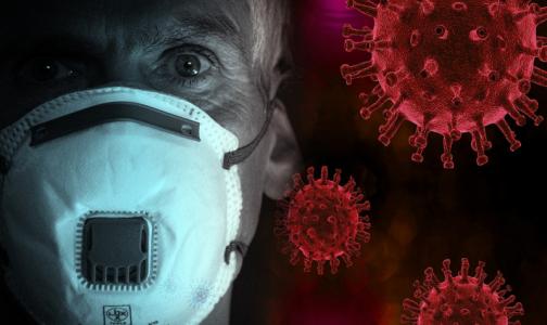 Фото №1 - В Петербурге умер третий пациент с коронавирусом