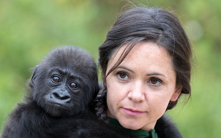 Фото №1 - Ученые сравнили остроту зрения животных и людей