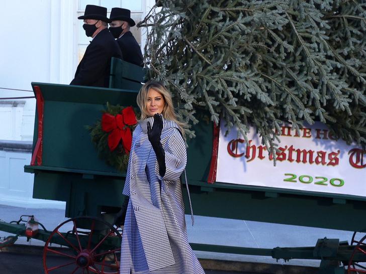 Фото №1 - Последнее Рождество в Белом доме: что Мелания Трамп хотела сказать новогодними декорациями
