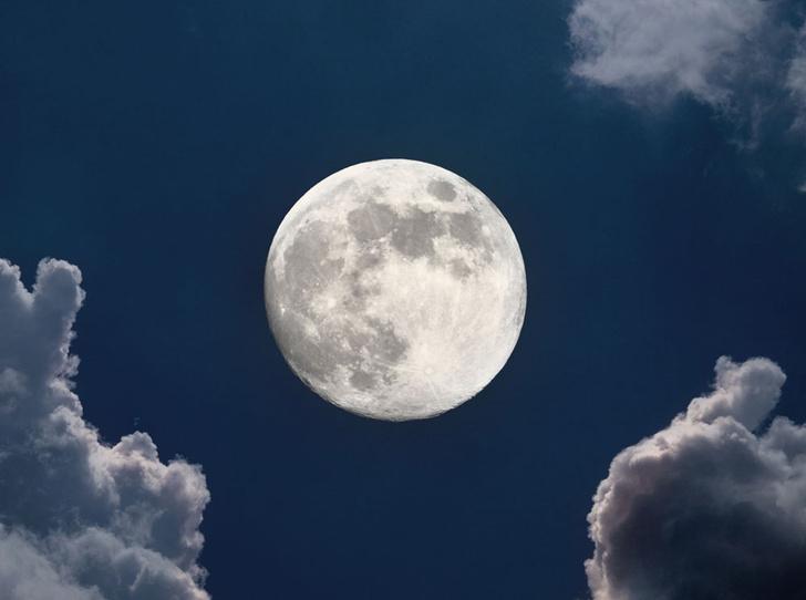 Фото №1 - Хроники оборотня: лунная диета