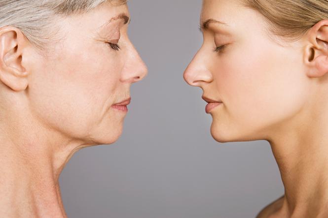 Фото №5 - Скорость старения: как ее узнать и замедлить на клеточном уровне