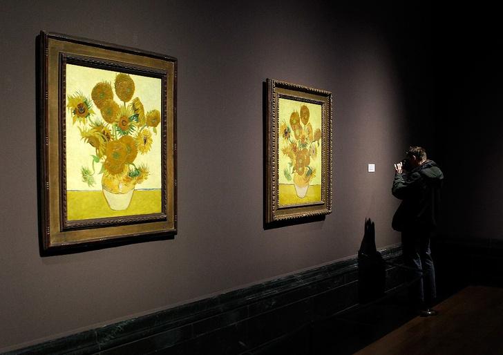 Фото №1 - «Подсолнухи» Ван Гога со временем могут «завянуть»