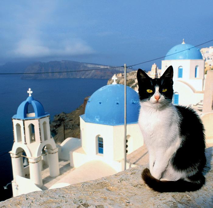 Фото №1 - Эти удивительные греки