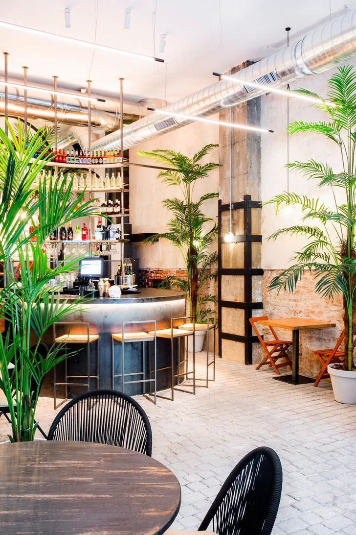 Фото №2 - Ресторан Alboroto в Мадриде