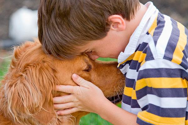 Фото №3 - Ребенок хочет собаку: 5 актуальных вопросов