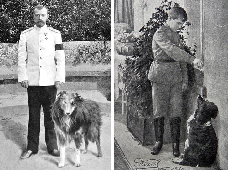 Фото №1 - Что случилось с домашними животными Романовых после трагедии 1918 года