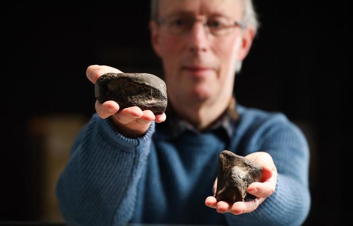 Фото №1 - В Ирландии впервые нашли останки динозавров