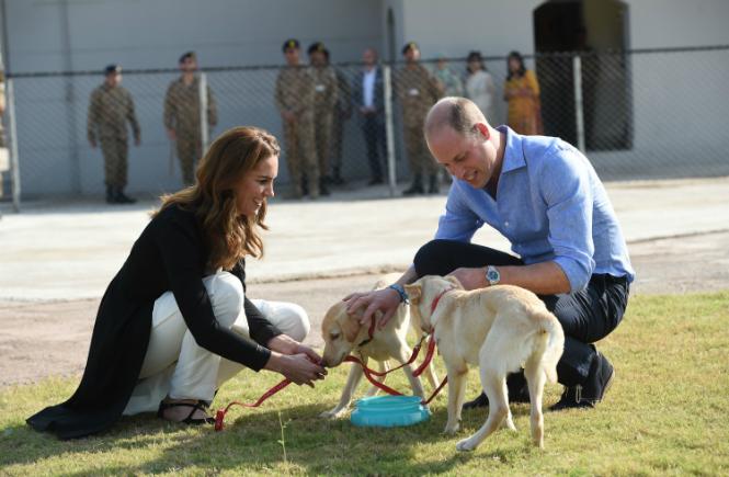 Фото №3 - Как британцы относятся к герцогиням Меган и Кейт (на самом деле)