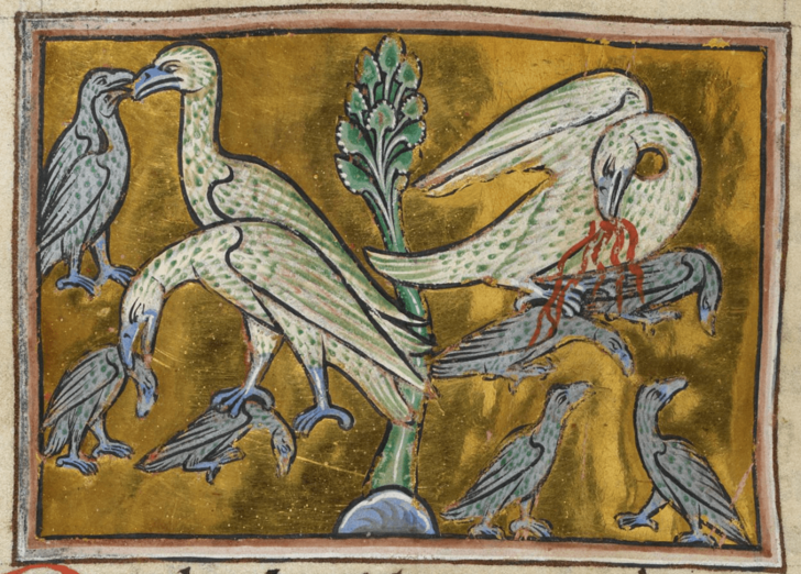 Фото №23 - Как в старину художники изображали животных, которых никогда не видели (25 странных существ)