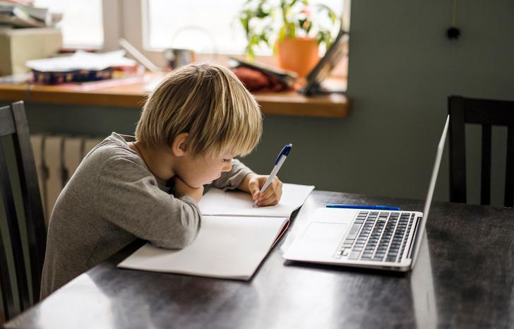 Будут ли дети учиться летом: Минпросвещения дало рекомендации по срокам окончания учебного года