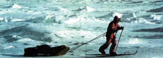 Фото №6 - Три полярных сюжета