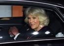 Будущая королева: как герцогиня Камилла готовится к своей главной роли