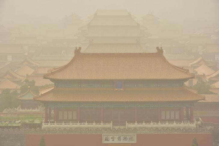 Фото №1 - Пыль оказалась полезна для экологии