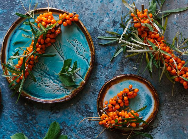 Фото №1 - В своем отечестве: самые полезные осенние ягоды