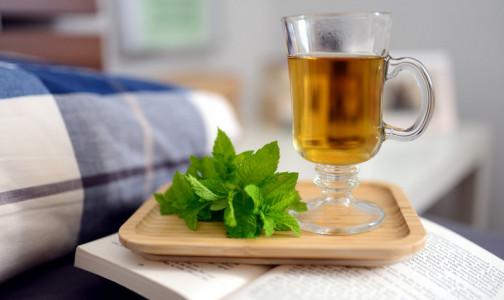 Фото №1 - Ученые: Зеленый чай может стать основой для противораковых препаратов нового типа