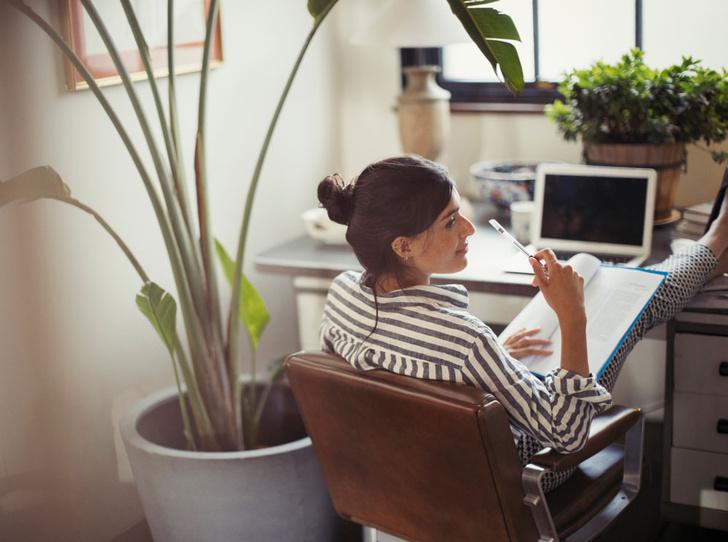 Фото №1 - Как организовать рабочее место дома