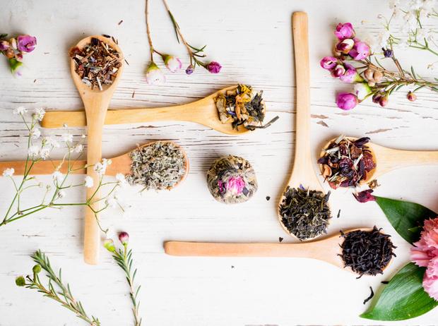 Фото №1 - Самые полезные лекарственные травы