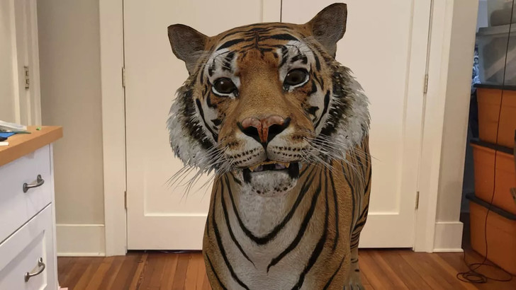Фото №3 - Залипательное развлечение от Google: трехмерное животное прямо у тебя дома