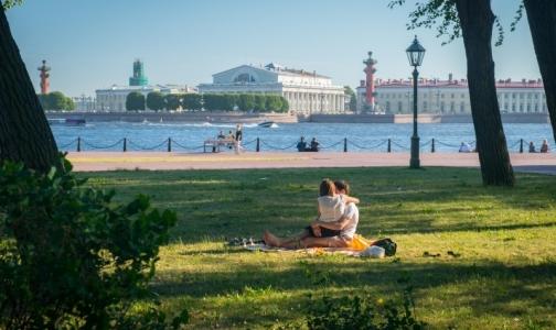 Фото №1 - В четырех районах Петербурга можно не бояться встречи с клещом