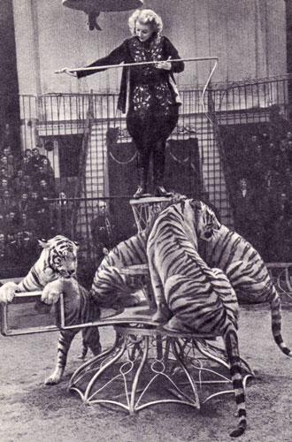 Фото №6 - Маргарита Назарова: звездный час, «итальянский» брак и одинокая смерть королевы тигров
