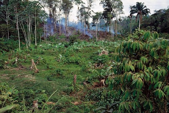 Фото №3 - 15 исчезающих мест, которые надо увидеть в ближайшие 5 лет