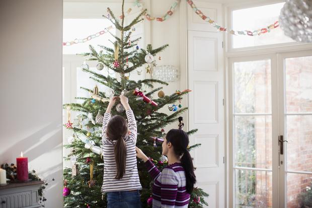 Почему в новый год ставят именно елку
