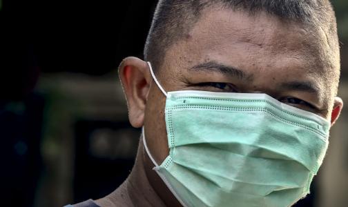 Фото №1 - Роспотребнадзор: В России нет угрозы распространения бубонной чумы