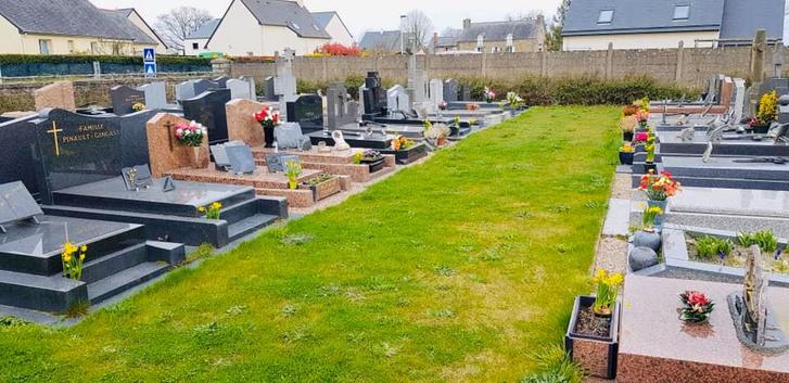 Фото №9 - История французского садовника, который украсил непроданными цветами целое кладбище, стала вирусной (фото)