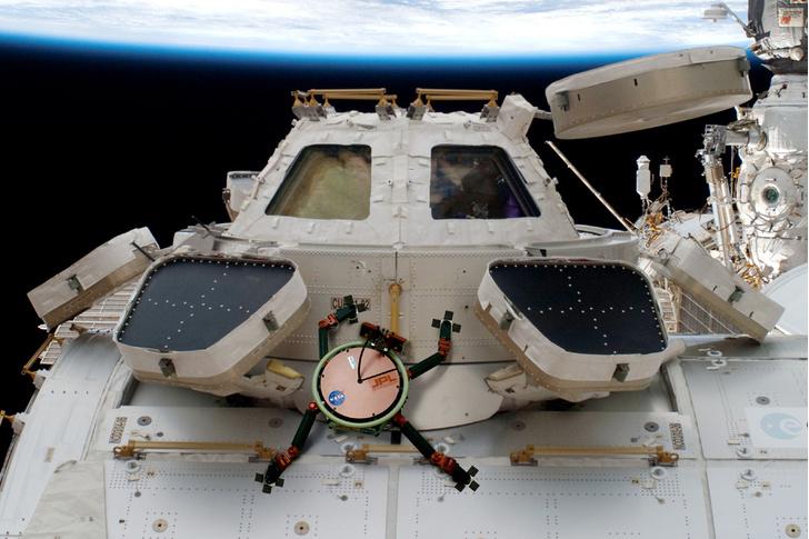 Фото №11 - Природный прототип: животные, подсказавшие идеи создателям космического оборудования