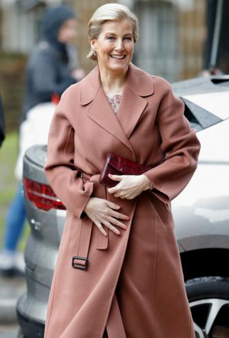 Фото №2 - Серый кардинал стиля: «любимая невестка Королевы» и ее новая особая миссия