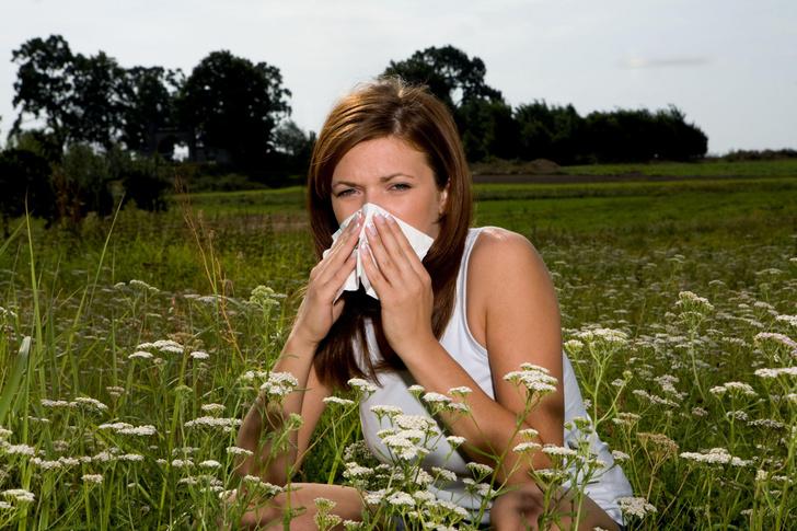 Фото №1 - Назван самый распространенный аллерген среди россиян