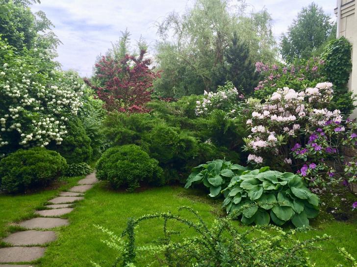 Фото №8 - ELLE DECORATION в саду у дизайнера Ирины Глик