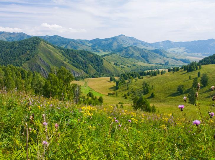 Фото №5 - Как восполнить энергию и красоту в горах Алтая