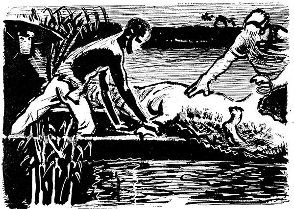 Фото №1 - Как поймать крокодила
