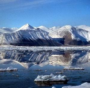 Фото №1 - В 2010 году в Арктике появится российский национальный парк