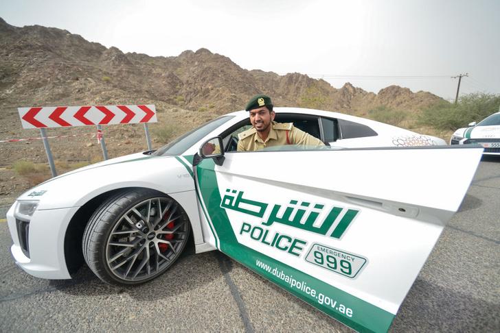 Фото №4 - На дорогах все спокойно: 7 фактов о дорожных полицейских разных стран мира