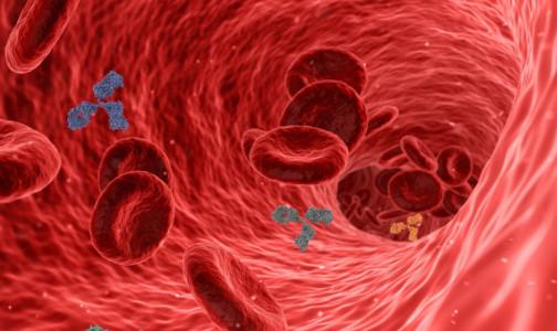 Фото №1 - Как добиться высоких антител к коронавирусу и стоит ли это делать: мнение ученого