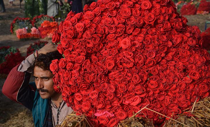 Фото №1 - Миллион алых роз