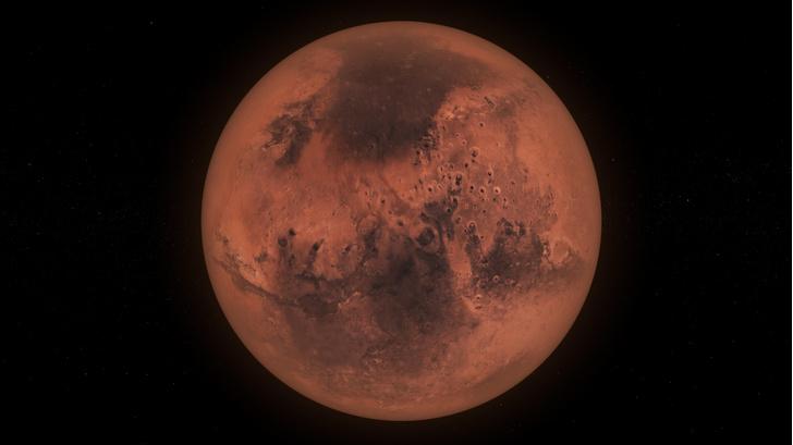 Фото №1 - Найдены бактерии, которые выживут на Марсе