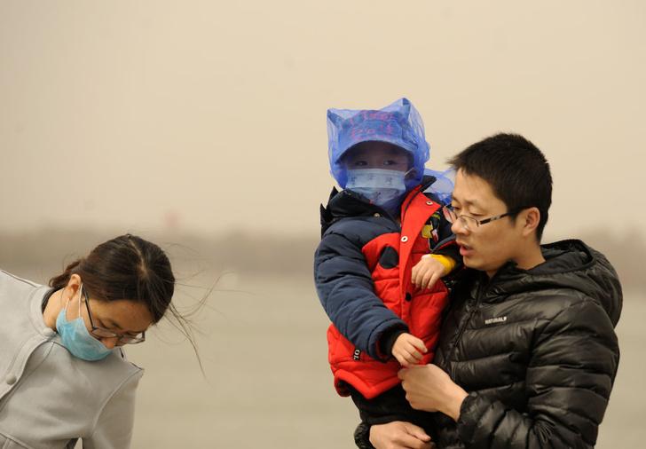 Фото №1 - Как загрязнение воздуха влияет на когнитивные способности