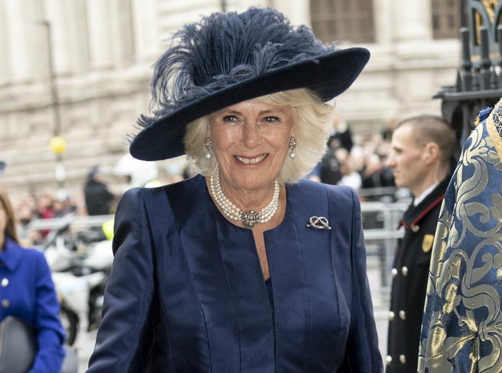 Фото №1 - Семейные узы: герцогиня Камилла и ее тайное послание Гарри и Уильяму