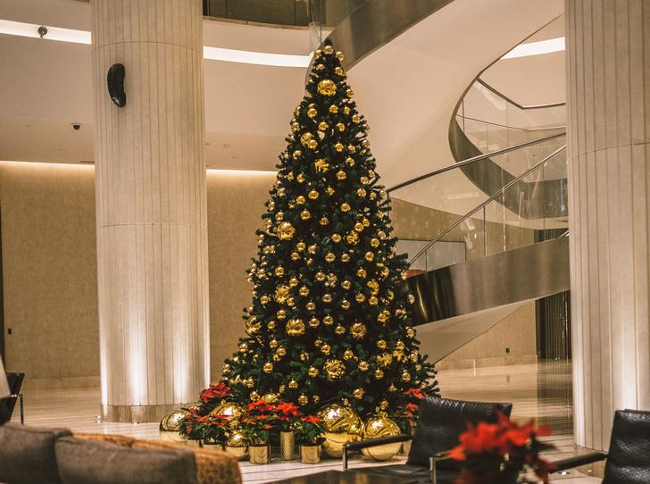 Фото №1 - Новый год в кругу самых близких: 3 причины отметить праздник в отеле