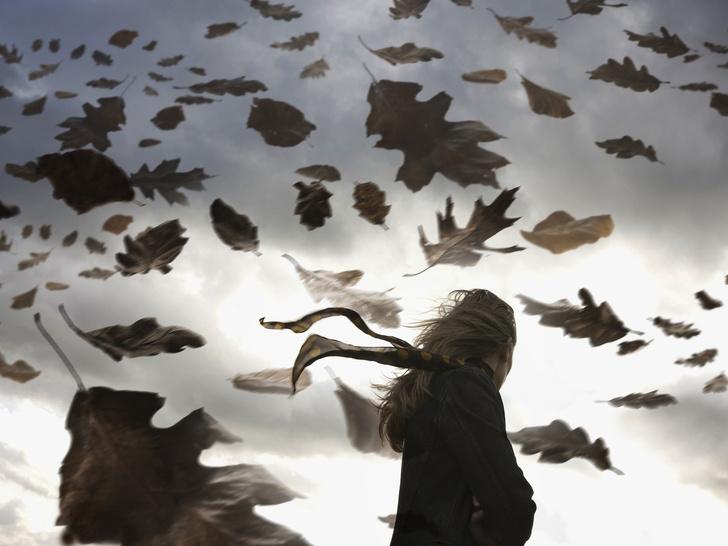 Фото №3 - 5 самых опасных травм осенью