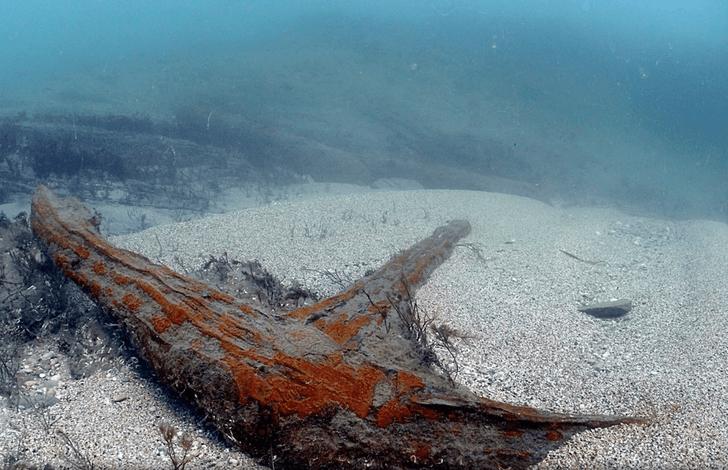 Фото №1 - У берегов Великобритании обнаружены следы корабля с сокровищами (видео)