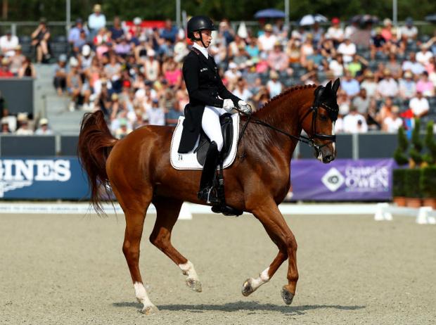 Фото №5 - Королевский спорт: что нужно знать о верховой езде